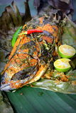 Grill Fish - Ikan Bakar. Ikan Bakar - Malaysian famous street food. Grill fish wrapped in banana leaf with a lots of spices Royalty Free Stock Images