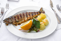 Grill fish Royalty Free Stock Photography
