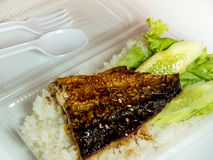 Grill fish on rice in plastic box, Take home food Stock Photo