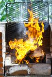 Grill flame Stock Photography