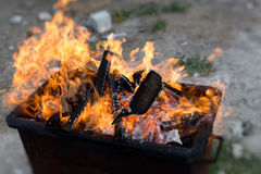 Grill flames Stock Image