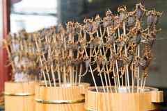 Grill and fried scorpions on stick Royalty Free Stock Images