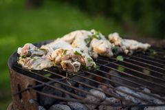 Grill garden party with ausages and meat royalty free stock images