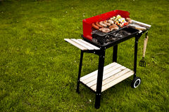 Grill on grass Royalty Free Stock Photos