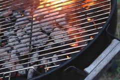 grill grilla płomień brykiety planszę Fotografia Royalty Free