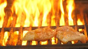 Grill in the kitchen of the restaurant or outdoors nature, the flame seeps through the grill, the chef lays on the grill. Grill pieces of chicken fillet or stock video footage