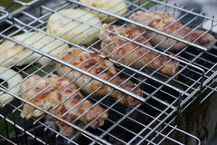 Grill from legs of the chicken with onion Royalty Free Stock Images