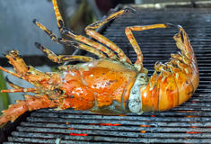 Grill lobster Royalty Free Stock Images