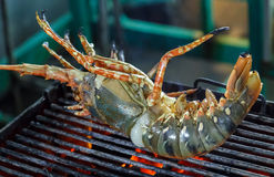 Grill lobster Stock Image