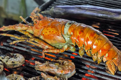 Grill lobster Stock Images