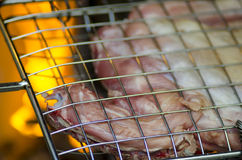 Grill with meat for barbecue fire in background Stock Photos