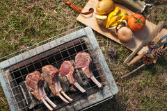 Grill meat Royalty Free Stock Photo