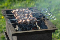 Grill meat on skewers outside the room. Cooking meat on the grill outdoors Royalty Free Stock Images