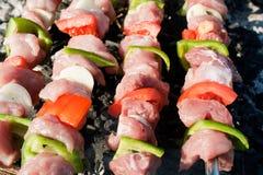 Grill mit Aufsteckspindeln des rohen Fleisches lizenzfreie stockfotos
