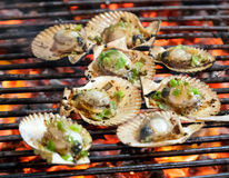 Grill mollusk mussel FRESH GRILLED FISH Royalty Free Stock Image