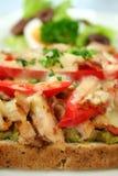 grill otwarta kanapkę kurczaka Zdjęcie Stock