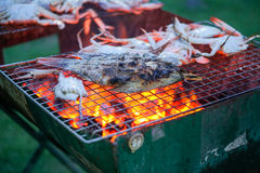 Grill prawn cooking crabs seafood. royalty free stock photography