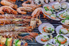 Grill prawn Stock Photos