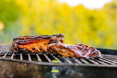 Grill rib Stock Photography