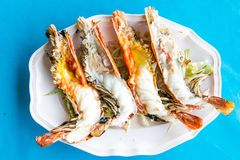 Grill river prawns on a plate with blue background Stock Image