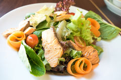 Grill salmon ceasar salad Royalty Free Stock Images