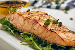 Grill Salmon Steak Stock Photography