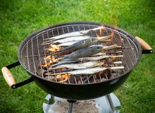 Grill sardines Royalty Free Stock Images