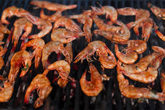 Grill shrimp Stock Photos