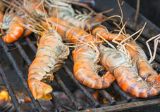 grill shrimp Stock Photography