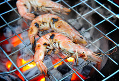Grill Shrimp in hot fire Stock Photo