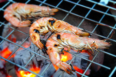 Grill Shrimp in hot fire Royalty Free Stock Image