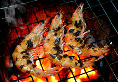 Grill Shrimp in hot fire from charcoal Royalty Free Stock Image