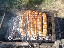 grill, turystyka, pinkin zdjęcie stock