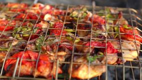 Grill volles VIDEOHD 1080 stock footage
