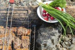 Grill z mięsem przy stosem Zdjęcia Stock