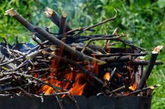 Grilla brązownika ogień Fotografia Stock