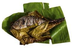 Grilla den fiskgilt-huvudet braxen som slås in i bananbladet som isoleras på vit bakgrund Sparus aurata arkivbilder