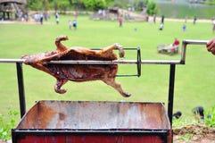 Grilla det hela svinet på varmt kol i by i Vietnam Royaltyfria Bilder