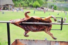 Grilla det hela svinet på varmt kol i by i Vietnam Arkivbild