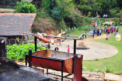 Grilla det hela svinet på varmt kol i by i Vietnam Royaltyfri Bild