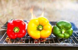 Grilla grönsaker (peppar, paprika) på gallret Fotografering för Bildbyråer
