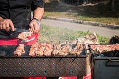 Grilla grill Obraz Stock
