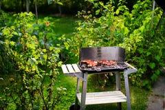 Grilla grill z różnorodnymi rodzajami mięso Zdjęcia Stock