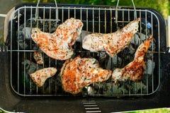 Grilla grill z różnorodnymi rodzajami mięso Obraz Royalty Free