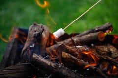 Grilla marshmallower på brand arkivfoto