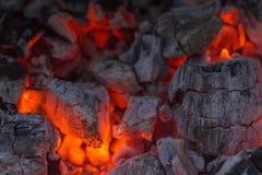, grilla węgiel drzewny, płonący węgiel drzewny w tle Obraz Stock