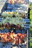 Grilla warzywa i mięsa skewers gotujący na ogieniu w bardzo długo cukiernianym grillu outdoors, BBQ zdjęcia royalty free