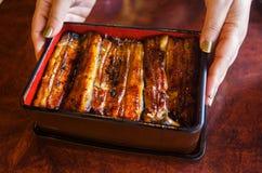 Grillad ål över ris med japansk sås Arkivfoto