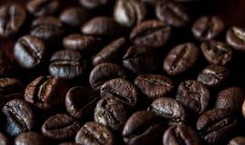 Grillad bakgrund för espressokaffebönor Arkivbilder