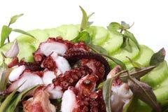 Grillad bläckfisk Royaltyfri Bild